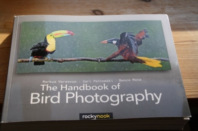 Birdphotography_1