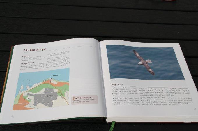 Fuglelokaliteter_Danmark_1