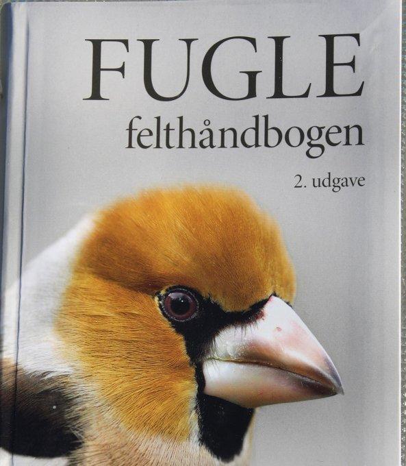 gode fugle navne