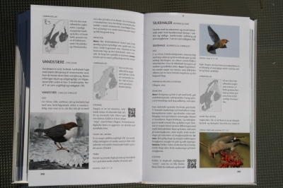 bib-fuglebogen2013-005