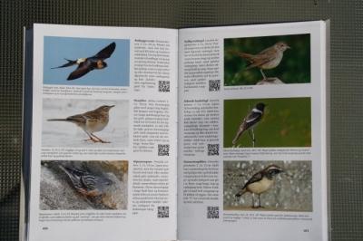 bib-fuglebogen2013-010