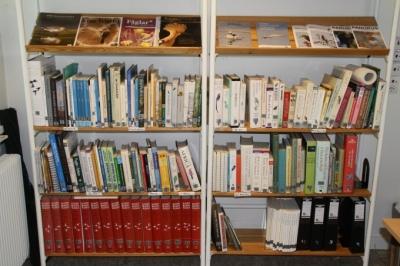 biblioteket 005