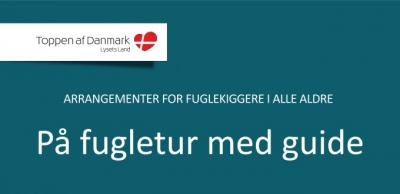 fugledage_program_2013-1
