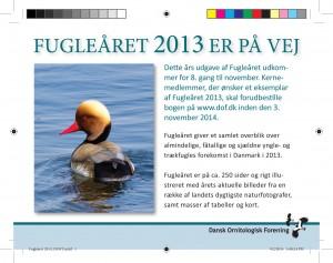 Fugleaaret 2013