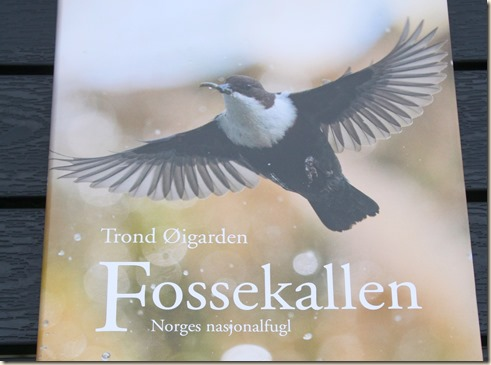 Fossekallen_1