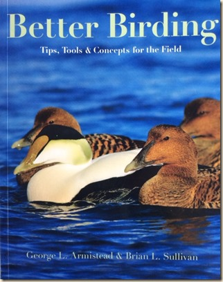 birding3
