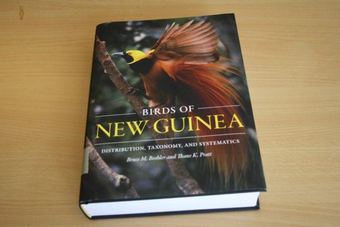 new-guinea-01.jpg