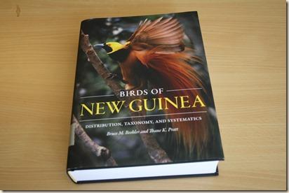 new guinea 01