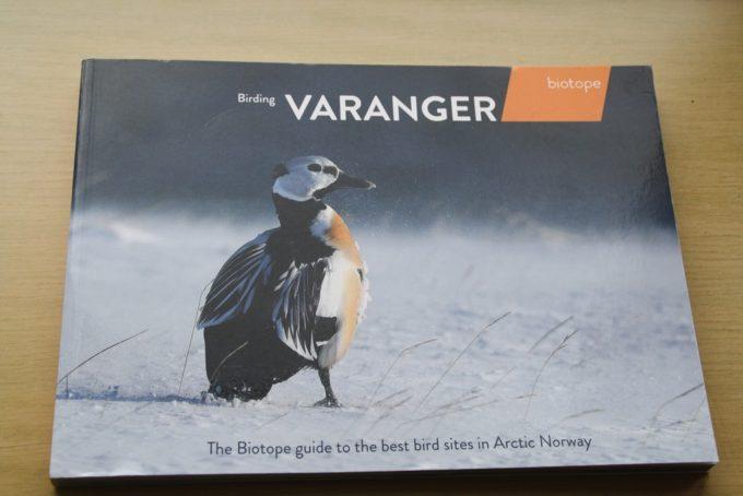 Birding_Varanger_1.jpg