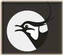 logo_vibe