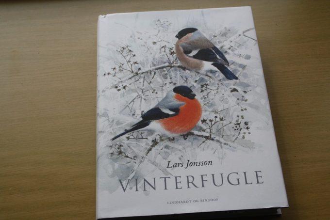 vinterfugle-1.jpg