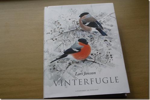 vinterfugle 1