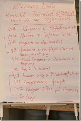 Ørnens Dag 2017 lv