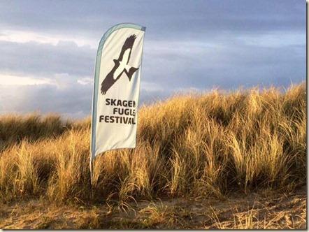 Skagen_Fuglefestival_beachflag