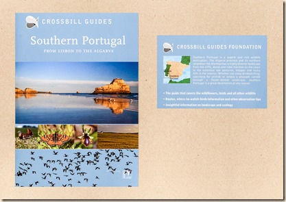Algarve_1_edited-1